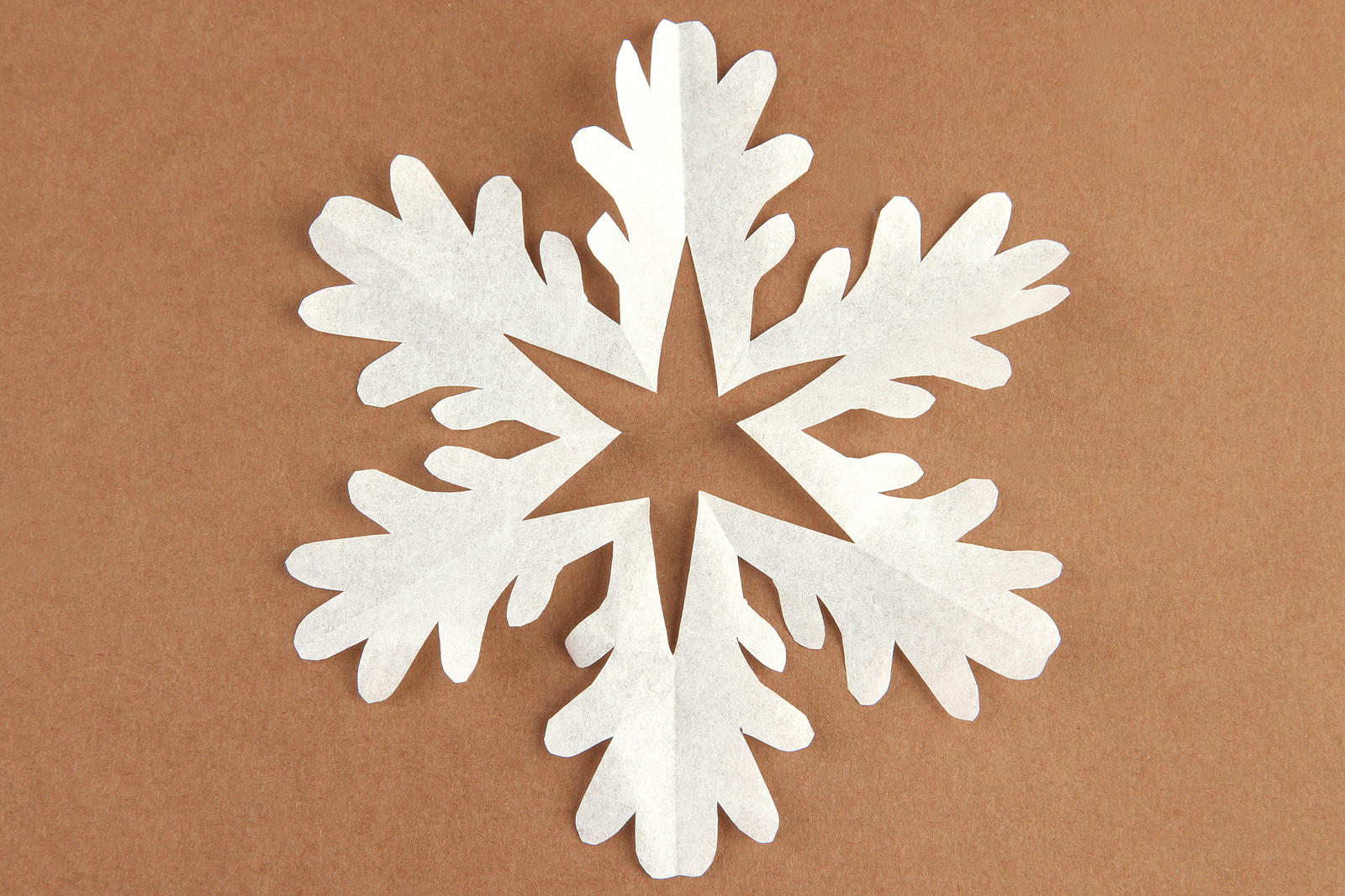 Bigstock Beautiful Paper Snowflake On B 55867607